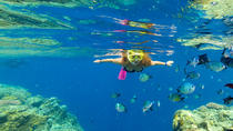 Whitehaven Beach and Chalkies Beach Snorkeling Adventure from Airlie Beach, Hamilton Island or ...