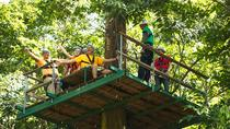 Adrena-Line Zipline Canopy Tour at Rainforest Adventures , St Lucia, Ziplines