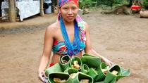 Authentic Embera Indian Village Tour, Panama City, null
