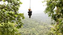 Canopy Zipline Eco-Adventure Tour from San Jose, サンノゼ