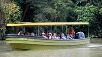 Eco Canal Cruise On Gatún Lake And Miraflores Locks, Panama City, Half-day Tours