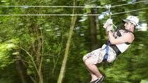 Jamaica Sky Explorer and Optional Zipline Tour, Montego Bay, Ziplines