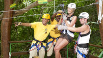 Ocho Rios Shore Excursion: Rainforest Adventures Sky Explorer and Zipline at Mystic Mountain, Ocho ...