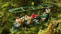 Rainforest Adventures Aerial Tram Tour, St Lucia, Ziplines