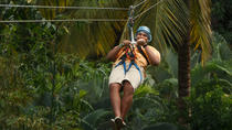 Rainforest Adventures St Lucia Aerial Tram and Zipline Tour, St Lucia, Ziplines