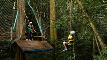 St Lucia Shore Excursion: Rainforest Aerial Tram, Zipline and Hiking, St Lucia, 4WD, ATV & Off-Road ...