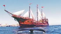 Puerto Vallarta Shore Excursion: Banderas Bay Pirate Sailing Cruise, Puerto Vallarta, Ports of Call ...
