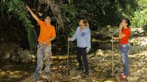 Puerto Vallarta Shore Excursion: Riverside Hiking at Nogalito Tour, Puerto Vallarta, Hiking &...