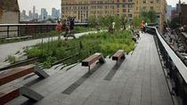 New York High Line Park Walking Tour, New York City, null