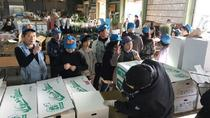 An Exceptionally Rare Experience! The Flower Auction, Kyushu, Cultural Tours