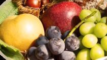 Choudo-gari- Picking Fruits of the Season, Hiroshima, 4WD, ATV & Off-Road Tours