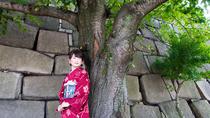 Kimono Walking Plan near Osaka Castle, Osaka, Attraction Tickets