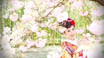 Kyoto Location Photo Wedding in Japanese-style Bridal Dress, Kyoto, Photography Tours
