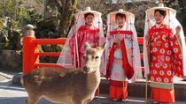 Sightseeing in Tsuboshozoku - traditional costume of noble women 1000 years ago, Kyoto, Custom...