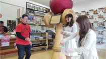 Touring Aki Province - Lean how to play kendama at the kendama workshop, Hiroshima, Cultural Tours