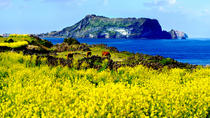 All-Inclusive Small Group Full Day Tour of Jeju Island, Jeju, Full-day Tours