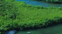 Best of Mangrove Lagoon Adventure, St Thomas, 4WD, ATV & Off-Road Tours