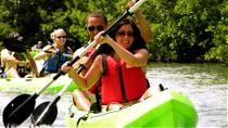St Thomas Mangrove Lagoon Kayak and Snorkel Tour, St Thomas, Snorkeling