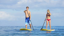 Stand Up Paddling Mangrove Lagoon Tour, St Thomas, Stand Up Paddleboarding