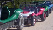 Dune Buggy Tour and Snorkeling at Punta Sur Including Lunch, Cozumel, 4WD, ATV & Off-Road Tours