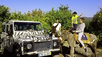 DONKEY FARM EXPERIENCE 4X4, Faro, 4WD, ATV & Off-Road Tours