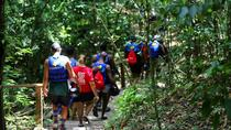 Puerto Plata: 6-Hours Damajagua Waterfalls and Local Food Discovery Tour, Puerto Plata, Day Trips