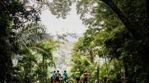 Rio de Janeiro: 5-hours Morning Rio Jungle Bike Tour, Rio de Janeiro, Bike & Mountain Bike Tours