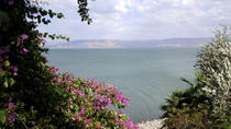 2-Day Northern Israel Tour from Jerusalem: Golan Heights, Nazareth and the Sea of Galilee