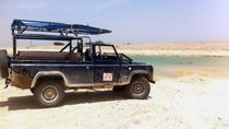 Desert Safari and Dead Sea Day Trip from Tel Aviv, Tel Aviv, 4WD, ATV & Off-Road Tours