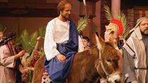 Palm Sunday in Jerusalem: Mass at Bethpage and Via Dolorosa Procession with Transport from Tel...