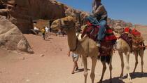 Petra day tour from Jerusalem by bus, Jerusalem, Cultural Tours