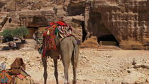 Petra day tour from Tel-Aviv by bus, Tel Aviv, Cultural Tours