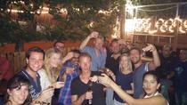 Pub Crawl in Tel Aviv, Tel Aviv, Bar, Club & Pub Tours