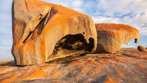 Flinders Chase Focus - Full Day Kangaroo Island Wildlife Tour, Kangaroo Island, 4WD, ATV & Off-Road ...
