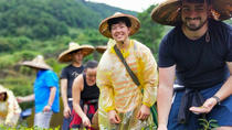 Shared 1-Day Tea Experience in Taipei, Taipei, Cultural Tours