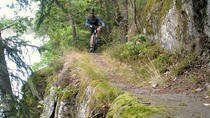 Advanced Mountain Bike Single Track Ride around Stockholm, Stockholm, Bike & Mountain Bike Tours