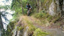 Avancerad Mountain Bike Single Track Ride runt Stockholm, Stockholm, Bike & Mountain Bike Tours