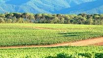 Full-Day Wine Tour around Aix en Provence from Marseille, Marseille, Wine Tasting & Winery Tours