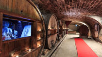 Full-day Wine Tour in Côtes de Provence from Nice, Nice, Wine Tasting & Winery Tours