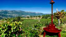Half-day Wine Tour in Bellet wine region from Nice, Nice, Wine Tasting & Winery Tours