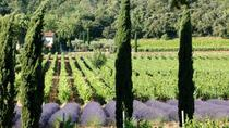 Half day Wine Tour in Coteaux d'Aix and Luberon from Aix en Provence, Aix-en-Provence, Wine Tasting ...