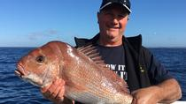 Ocean and Bay Fishing Charters departing Sorrento and Queenscliff, Mornington Peninsula, Fishing ...