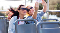 Comprehensive City Tour of Miami, Miami, Half-day Tours