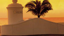 Fort Lauderdale Shore Excursion: Pre- or Post-Cruise Private Miami City Tour, Fort Lauderdale, null