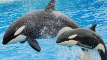 Miami Seaquarium with Transport, Miami, Nature & Wildlife