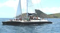 Catamaran Party Cruise to Nevis from St Kitts, St Kitts, Kayaking & Canoeing