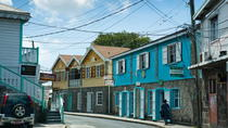 Queen City Nevis Island Tour, Nevis, City Tours