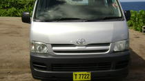 St Kitts or Nevis Roundtrip Transfer: Ground and Water Taxi Service