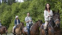 St Kitts Rainforest Horseback Riding Tour, St Kitts