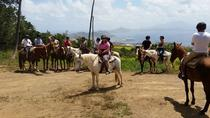 St Kitts Rainforest Horseback Riding Tour , St Kitts, Horseback Riding
